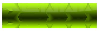 dswww logo